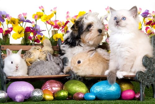 Don't forget to book for Easter