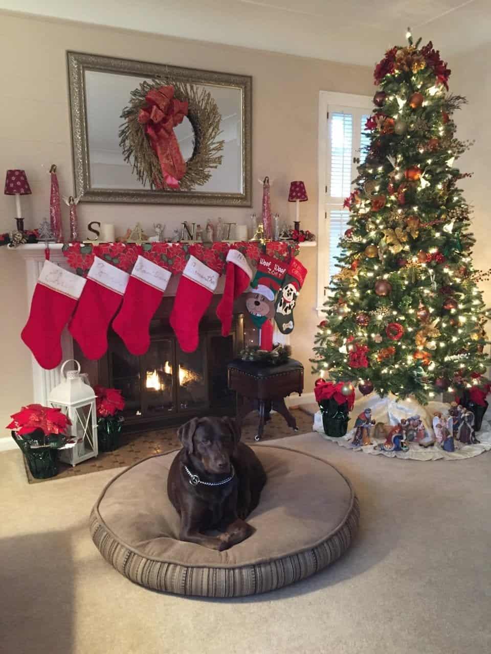 Wishing everyone a beautiful holiday season